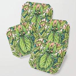 Leaf Mimic Coaster