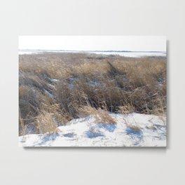 Winter Landscape No.5 Metal Print