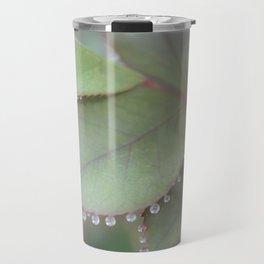 Dew drops on rose leaves Photography Travel Mug