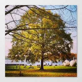 Picknick at Aaasee Canvas Print