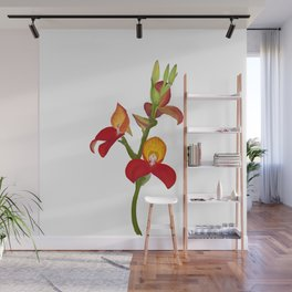 Pride of Table Mountain Disa flower Wall Mural