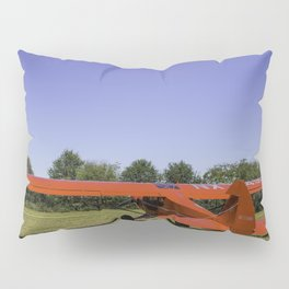 Waiting To Fly Pillow Sham