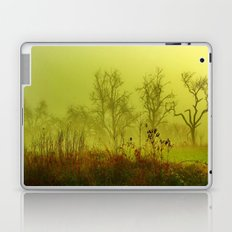Fairies Nebula Laptop & iPad Skin
