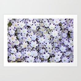 Flower carpet Art Print