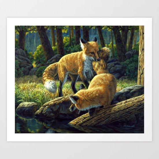 Red Fox Pups Playing Art Print
