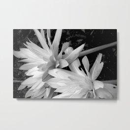 Fallen Flowers Metal Print