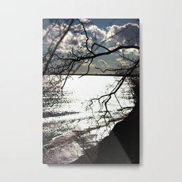 Vile Branches Metal Print