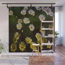 Field of Daisies by Aloha Kea Photography Wall Mural