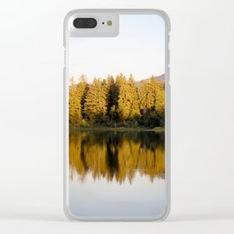 IMG_9861 Clear iPhone Case