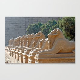 Ram-headed Sphinxes in Karnak Canvas Print
