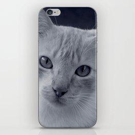 visiting cat iPhone Skin