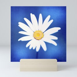 Royal Blue Yellow White Daisy Flower Photography, Bright Colorful Nature Photo Mini Art Print