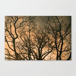 fractal tree Canvas Print