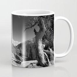 The Loch, Rocky Mountain national park Coffee Mug