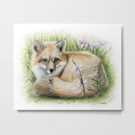 The Quiet Fox Metal Print