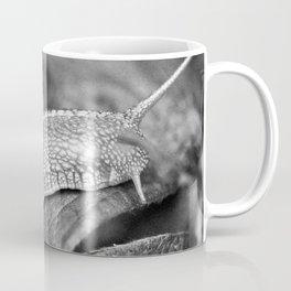 Snale Coffee Mug