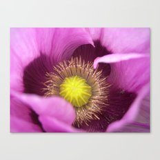 poppy macro Canvas Print