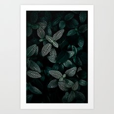 Dark Leaves 3 Art Print
