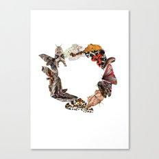 Moth Wreath Canvas Print