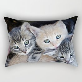 Kittens, 3 balls of tenderness Rectangular Pillow