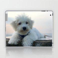 Teddy At Sunset Laptop & iPad Skin
