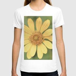 Beautiful Yellow Vintage Flower T-shirt