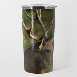 Stag In Morning Sunshine Travel Mug