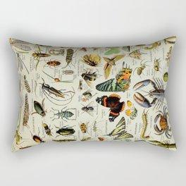 Arthropod Vintage Scientific Illustration French Language Encyclopedia Lithographs Educational Rectangular Pillow