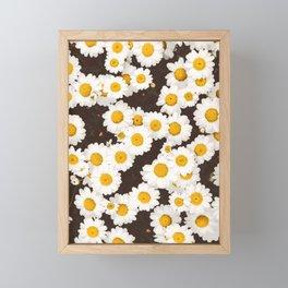 Daisy Daisies Framed Mini Art Print