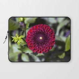 Dahlia In The Garden / 32 Laptop Sleeve