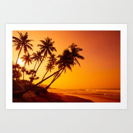 Sunset on tropical beach, coconut palm trees silhouettes Art Print