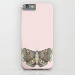 papillon de nuit iPhone Case