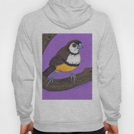 Owl Finch on Branch with Purple Sky, colored pencil, 2010 Hoody