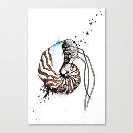 Nautilus with wires Canvas Print