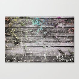 Planks and leaves Canvas Print