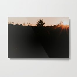 Dutch sunset purple heather at the forest  | Colourful Travel Photography | Veluwe, Holland (The Netherlands) Metal Print