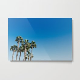 Blue sky and palm trees Metal Print