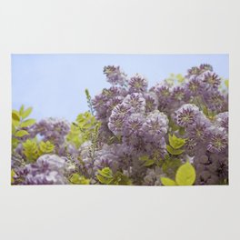 Lavender Wisteria with Apple Green Leaves and Powder Blue Sky Rug