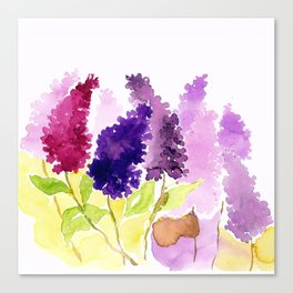 A bunch of lilacs Canvas Print