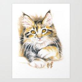 Maine Coon Kitty Art Print