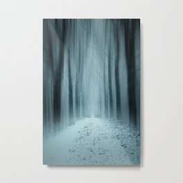 A Winter Mystery Metal Print