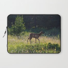 Elk calf in Jasper National Park Laptop Sleeve