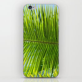 A single palm branch iPhone Skin