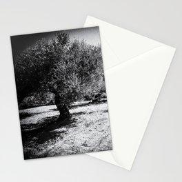 Old Olive Trees on Crete, Greece    Black & White   Landscape Photography   Travel Photography   Fine Art Photo Print Stationery Cards