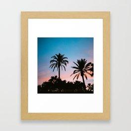 Palms in sunset Framed Art Print