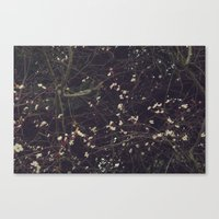 constellation Canvas Prints featuring Constellation by Esther Ní Dhonnacha