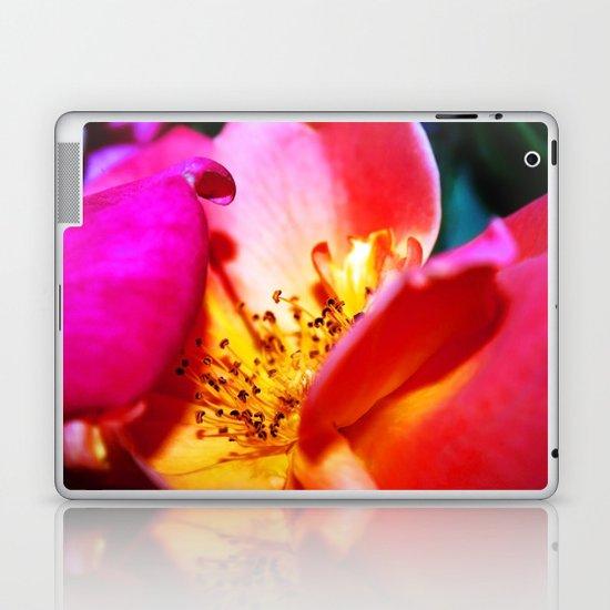 Rose Blush Laptop & iPad Skin