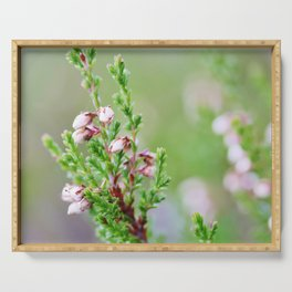 Heather flower Serving Tray