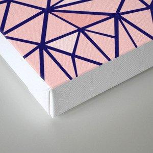 Broken Blush Canvas Print
