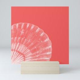 Scallop Shell Mini Art Print